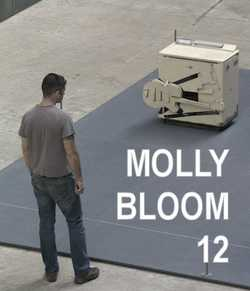 Molly Bloom 11, cover photo by Aidan Semmens